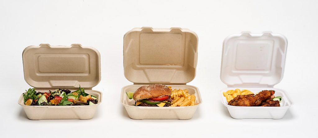 3 compostable hinged food containers