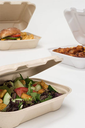 hinged food containers filled with food