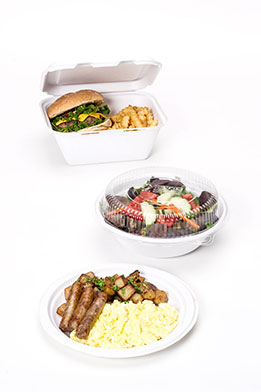 Foam Alternative Takeout Containers